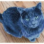 Broderie Diamant kit Squares intermédiaire Velvet chat bleu